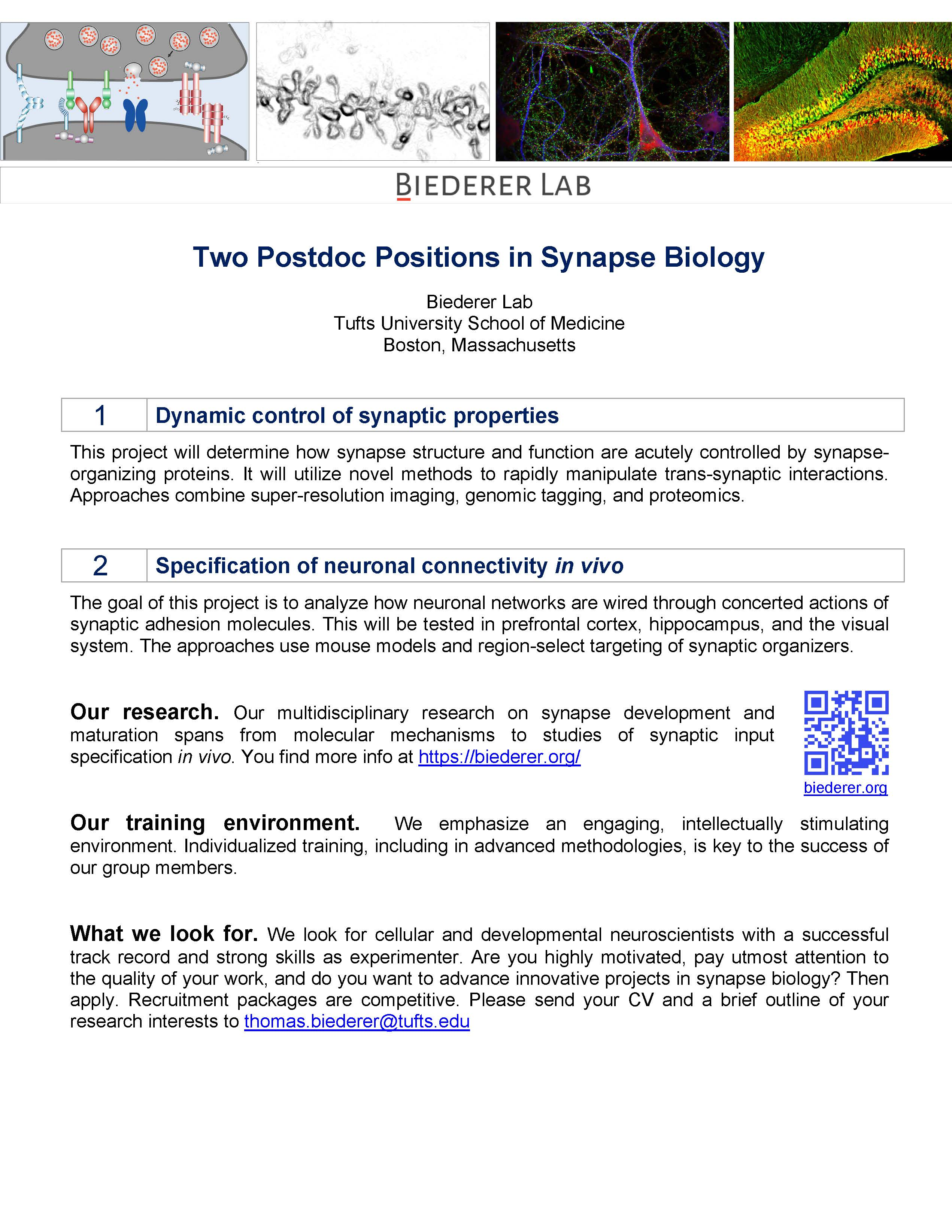 Postdoc Flyer Biederer Lab.jpg