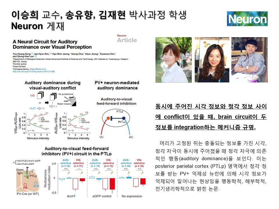 n20170213_SHLee_NeuronREV.jpg